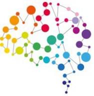 The Cambridge Code - Rainbow brain